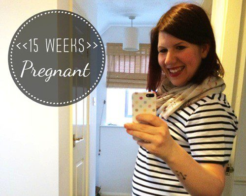 15 Weeks Pregnant: updates and a wish list