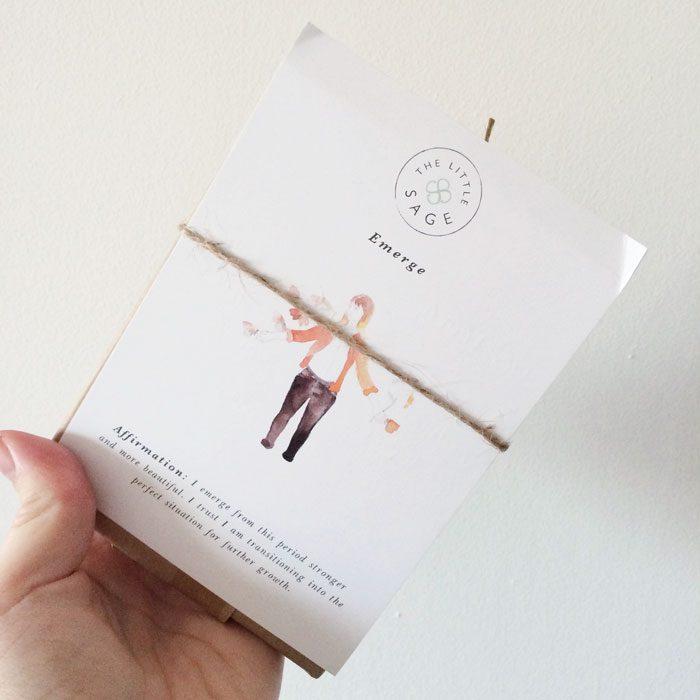 Little Sage Cards