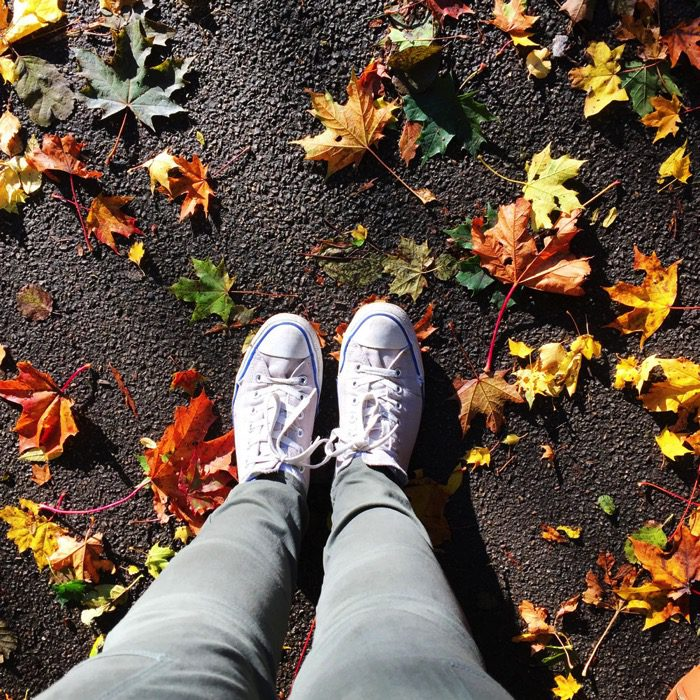 Converse and leaves