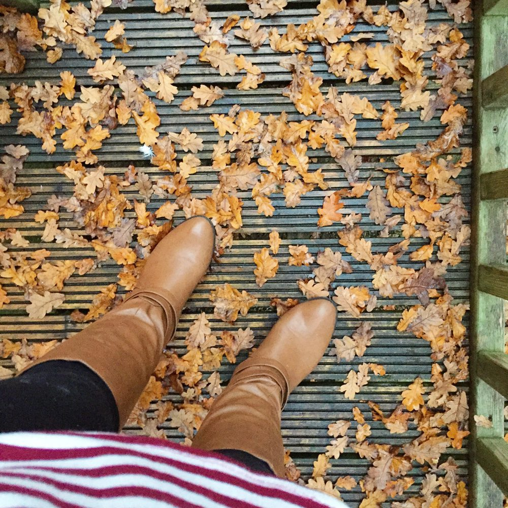Wholeheartedly Healthy Life: November