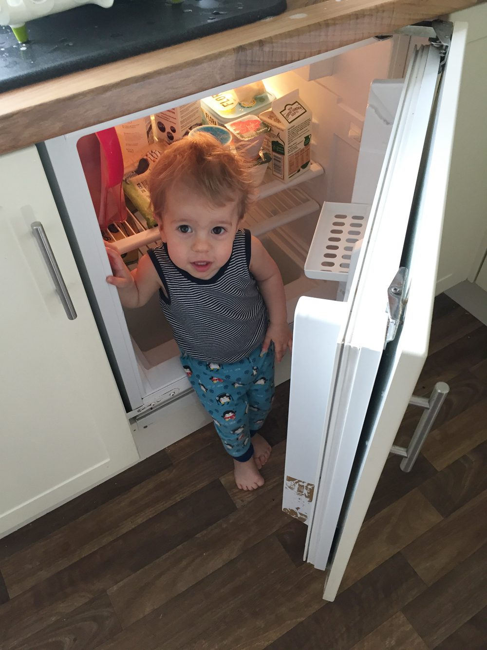 Finley in fridge: healthy eating for children