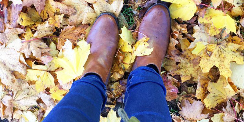 November-ings